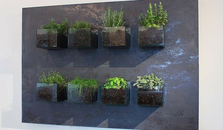 huerto vertical maneras plantar vegetales hierbas pared plantas ideas