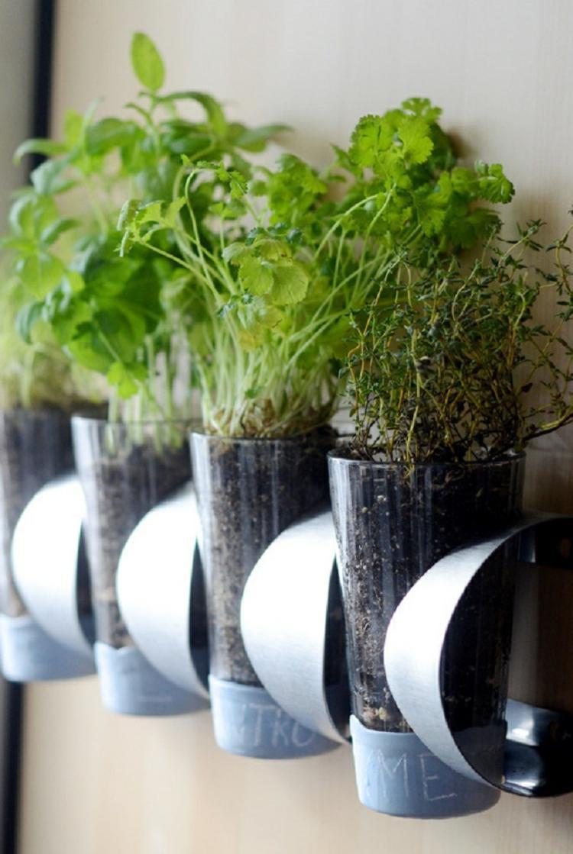 huerto vertical maneras plantar vegetales hierbas vasoso ideas
