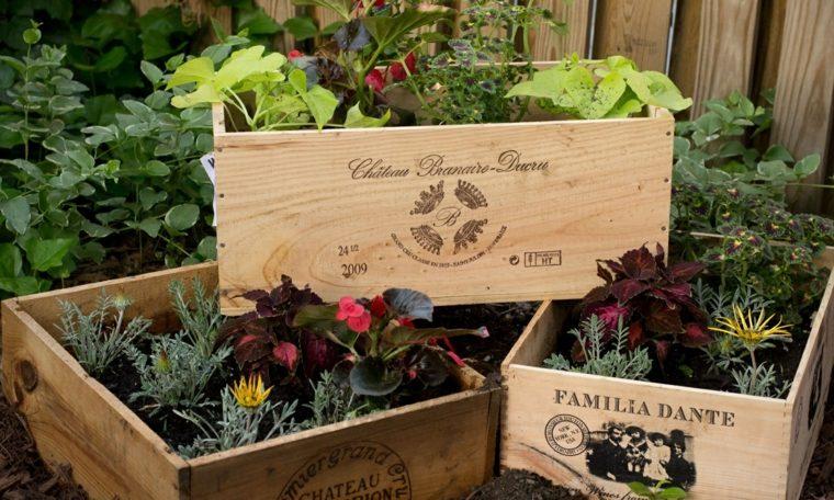ideas creativas manualidades jardin macetas viejas cajas plantas