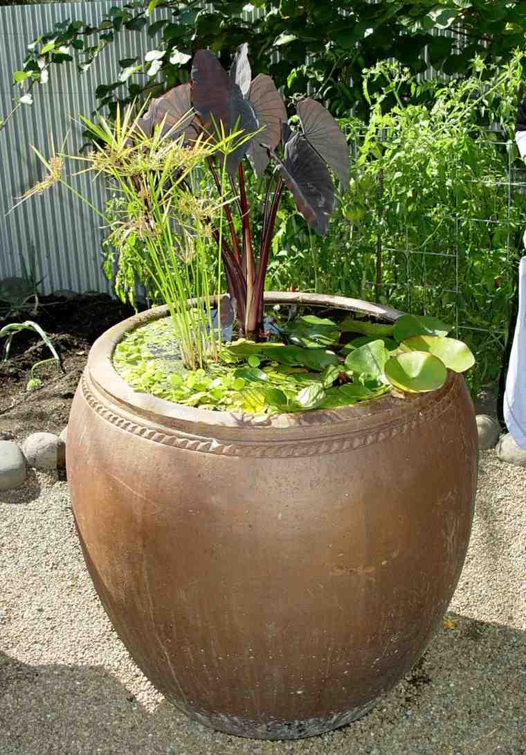 ideas originales plantas agua macetero