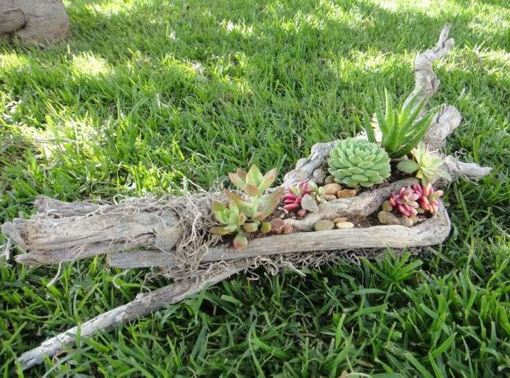 jardin ceped maceta madera plantas suculentas original