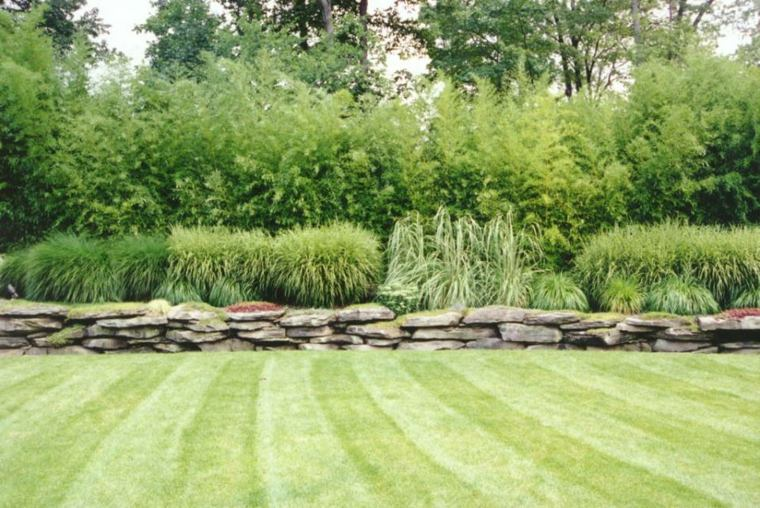 jardin moderno cesped bien cuidado