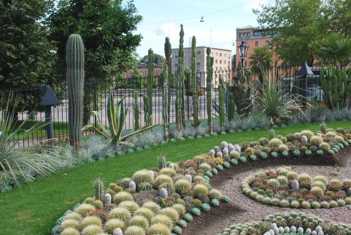 Jardin de cactus ideas para creaciones impresionantes for Jardines con cactus