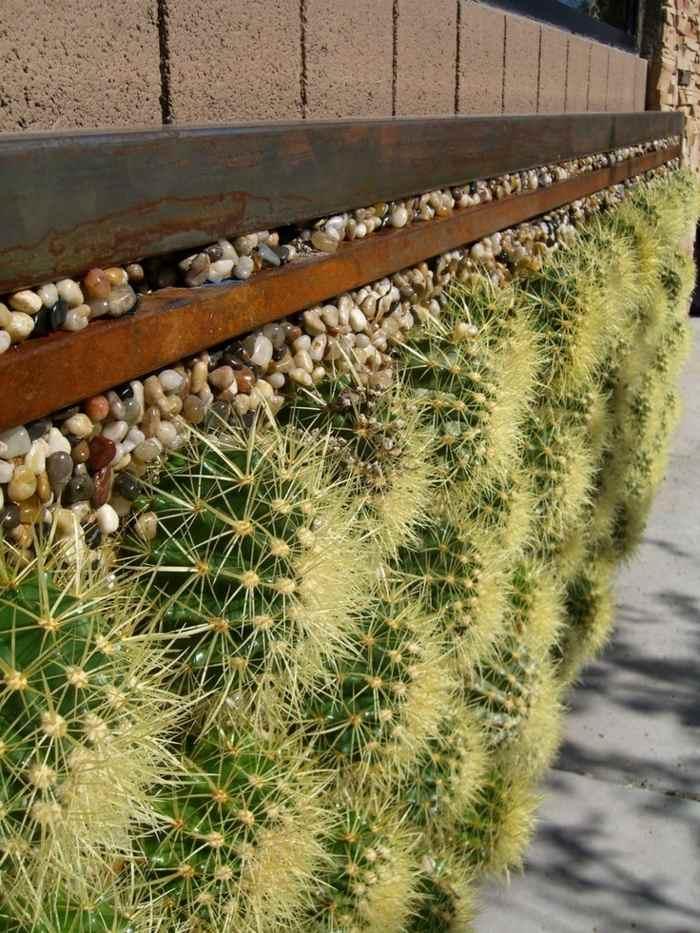 jardin de cactus muro bolas muro