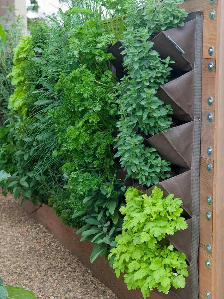 jardin vertical vegetales huerto bolsas pared ideas