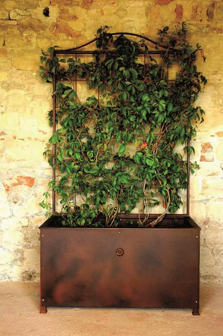 jardineras macetas opciones interesantes plantas trepadoras ideas