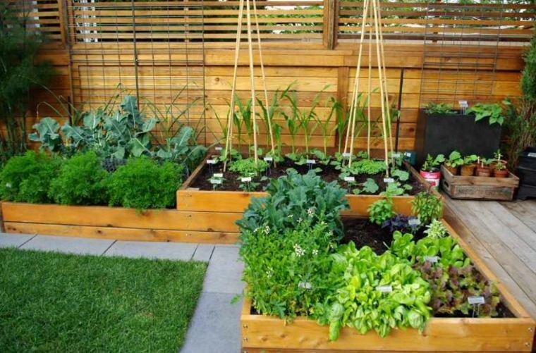 jardineras macetas opciones interesantes verduras jardin ideas