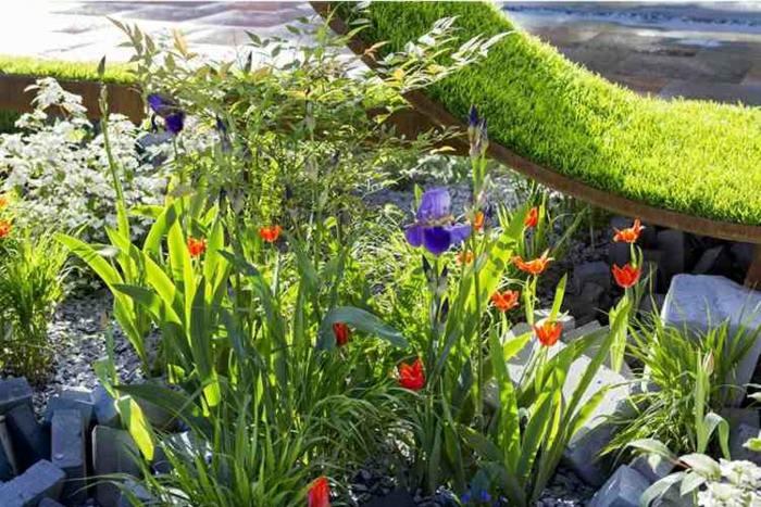 jardineria tendencias segmentos plantas grava
