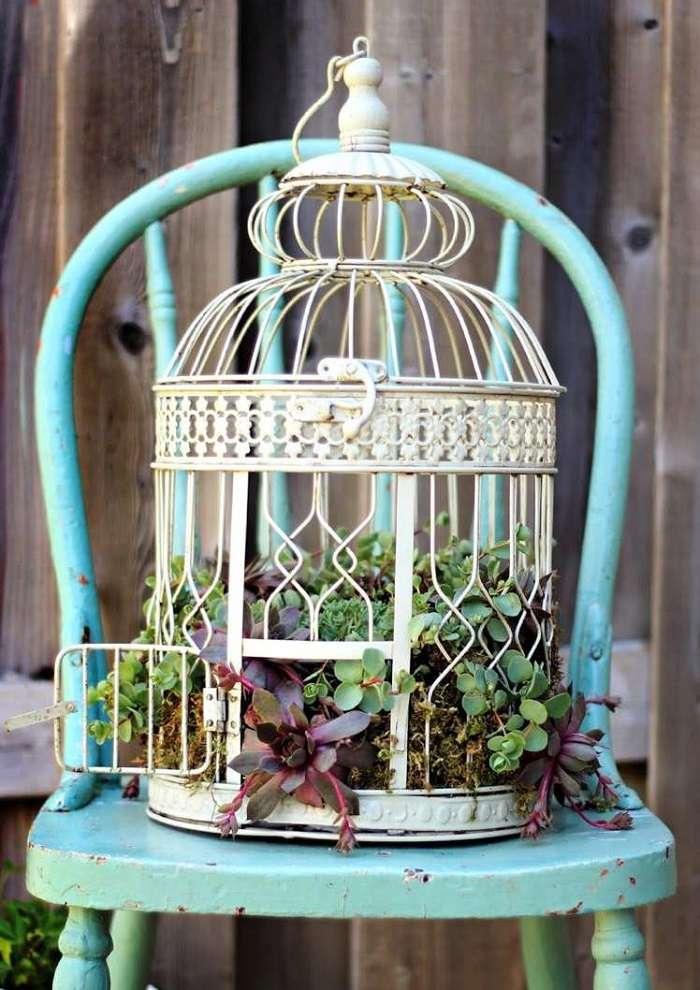 jardines suculentas vintage verdes figuras