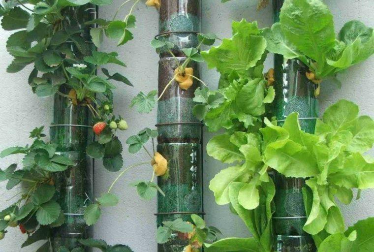 jardines verticales caseros tuberías