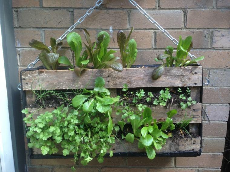 jardines verticales para terraza maceta