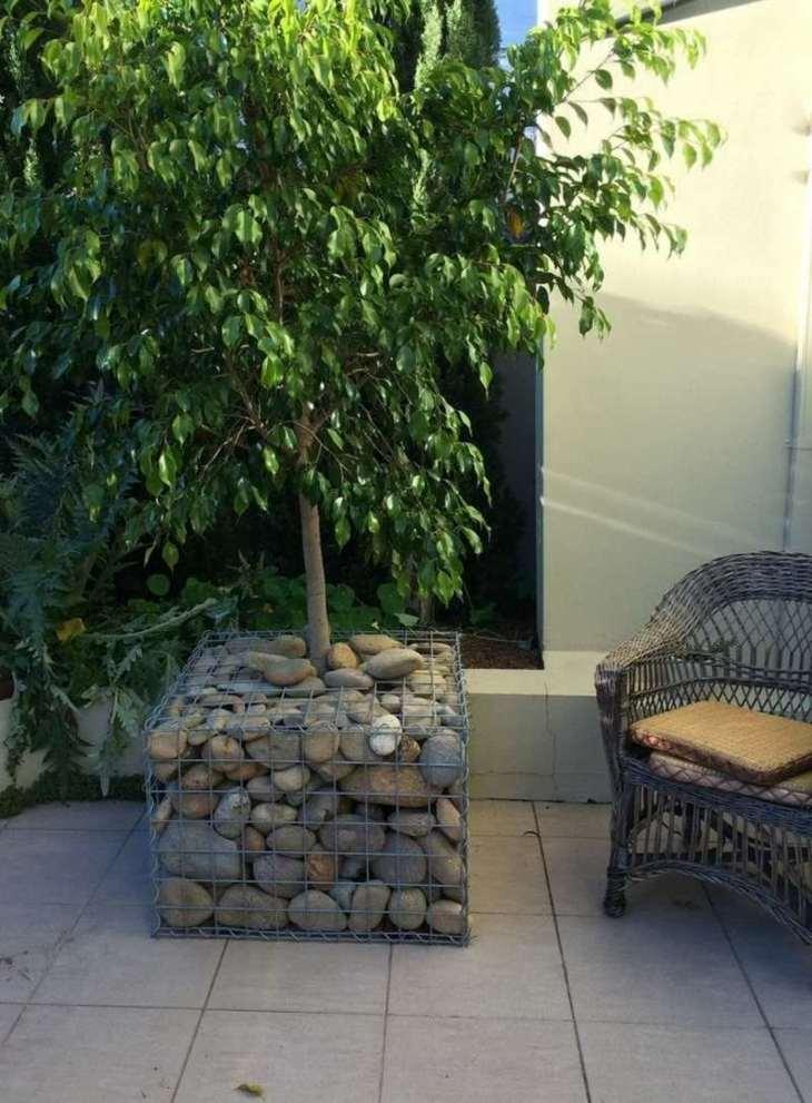 maceta gaviones arbol decoracion jardin opciones ideas