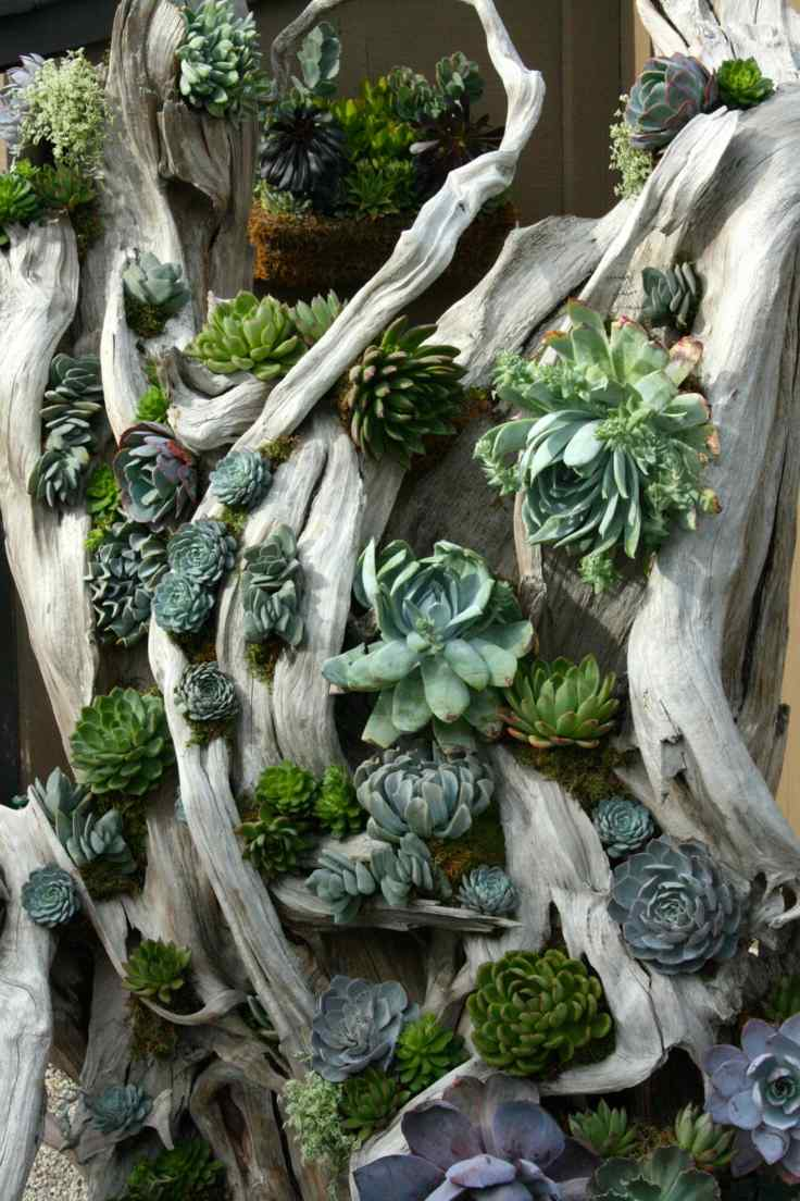 Suculentas ideas para decorar el jard n for Adornos de jardin en madera