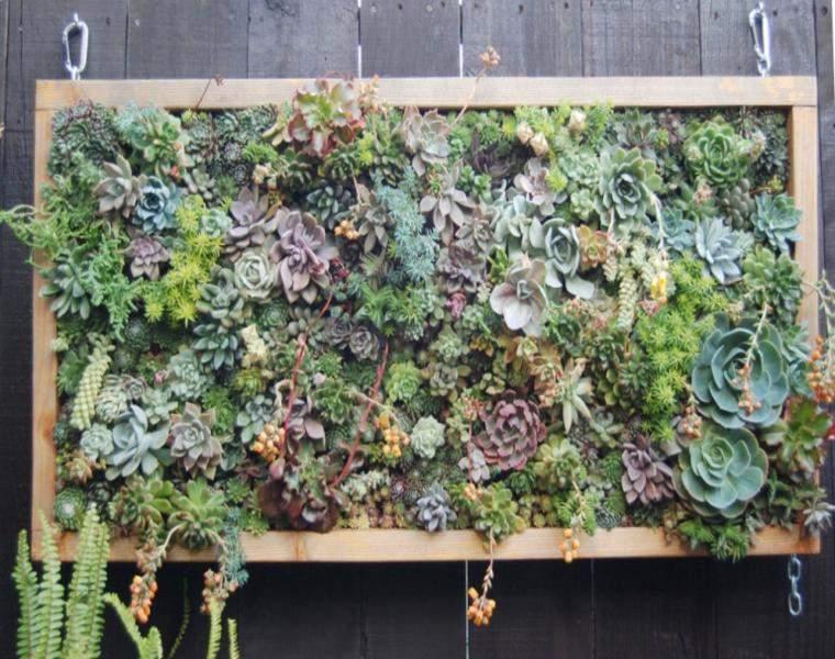panel jardin vertical con suculentas