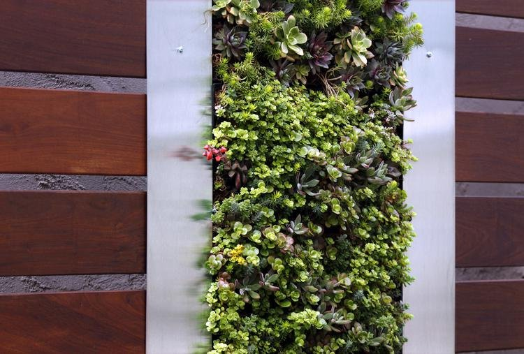 diseño de Roxy Kim-Perez Zen Garden