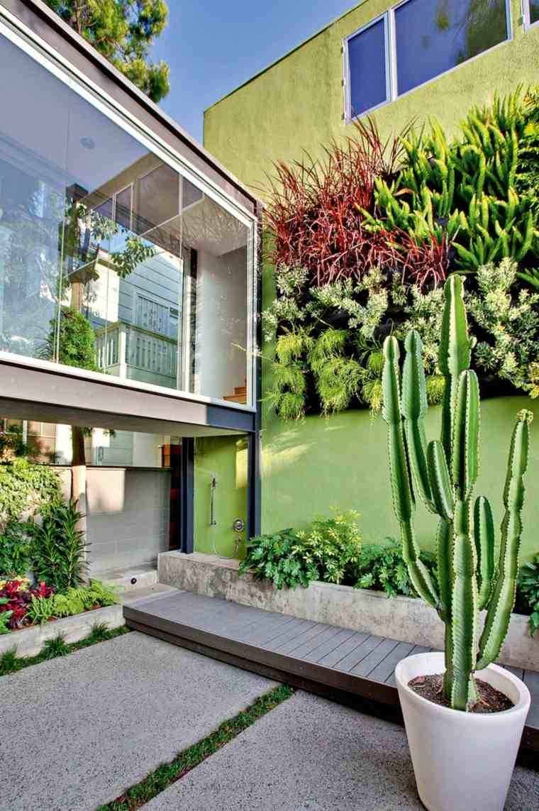 pared color verde plantas macetas jardin ideas