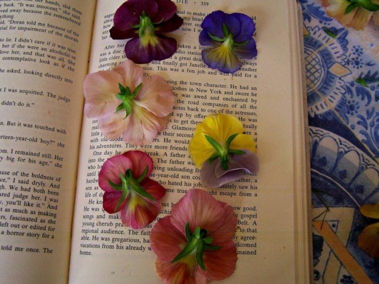 secar flores un libro hojas