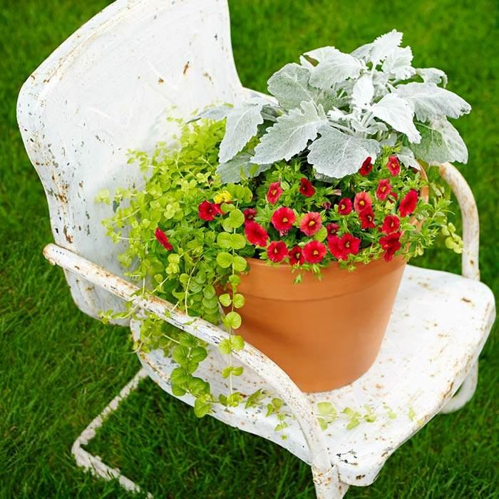 silla blanca contrastante suelos materiales