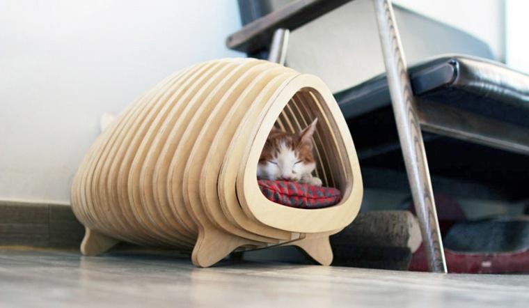 sofás para gatos cama suelo
