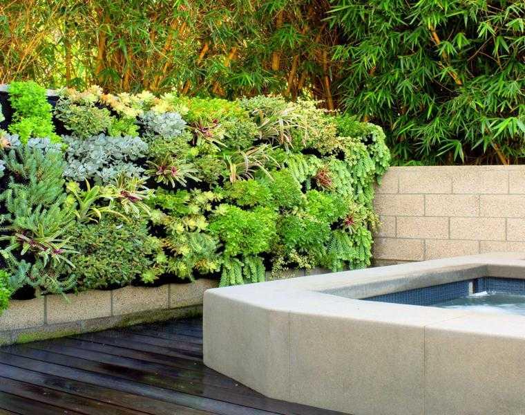 terraza moderna lujosa suculentas