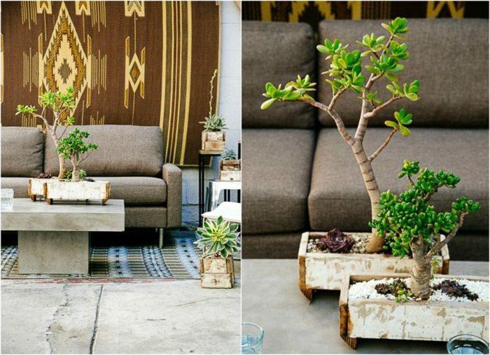 variante tipo bonsai fuentes tapiz