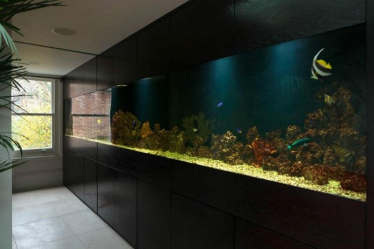 acuarios grandes pasillo