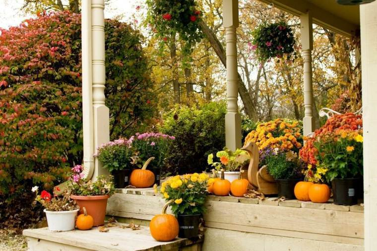 adultos bonito porche otoño