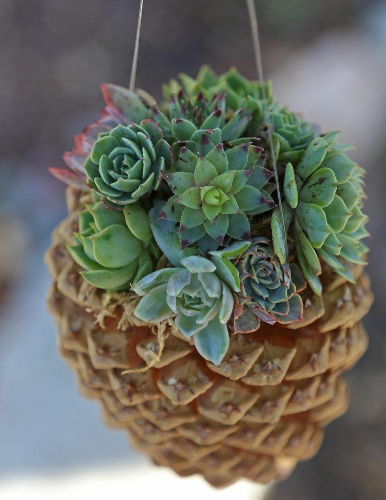decoración con piñas secas