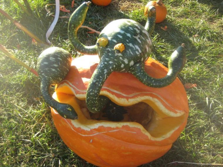 decoración de calabazas para halloween
