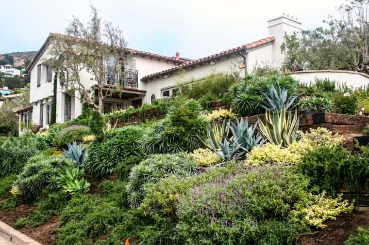 estupenda decoración plantas jardin