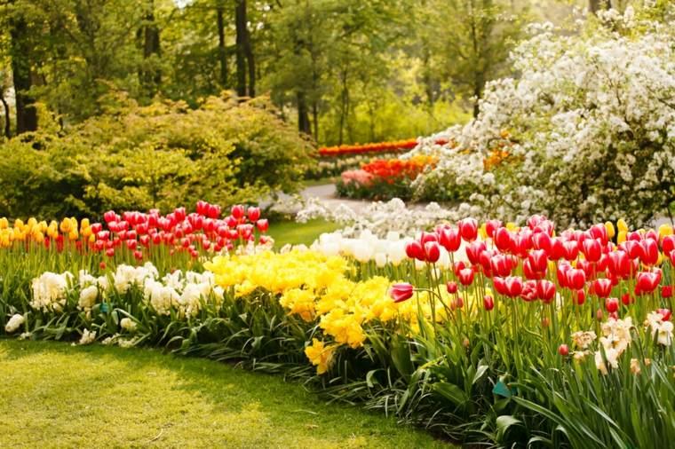 flores colores combinaciones salas amarillo