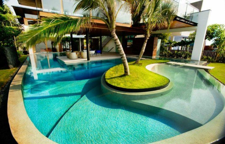 fotos de piscinas color patio palmeras