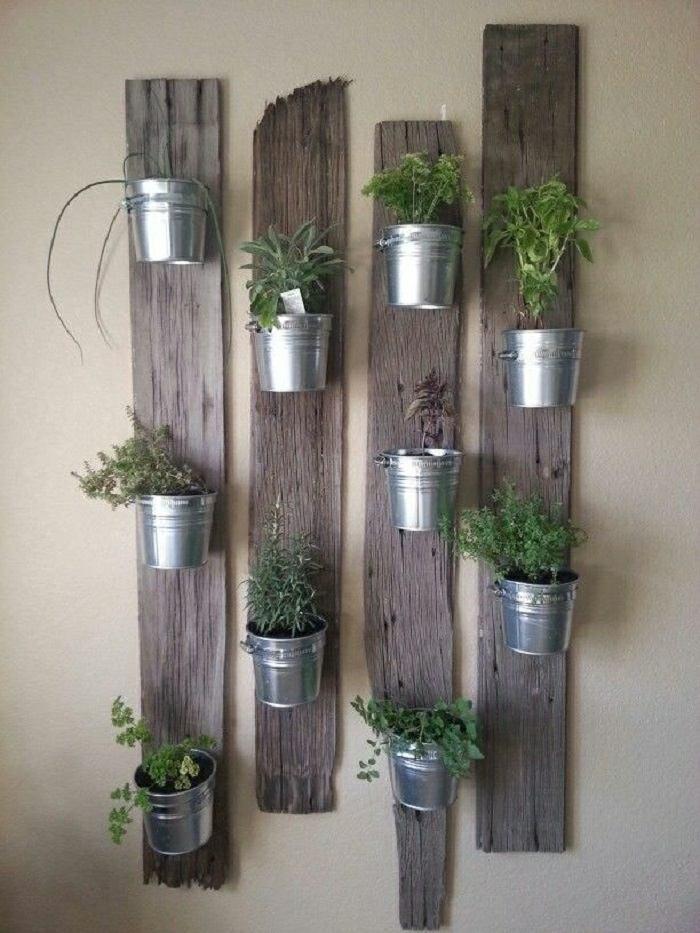 hierbas aromaticas paredes sistemas recuperada