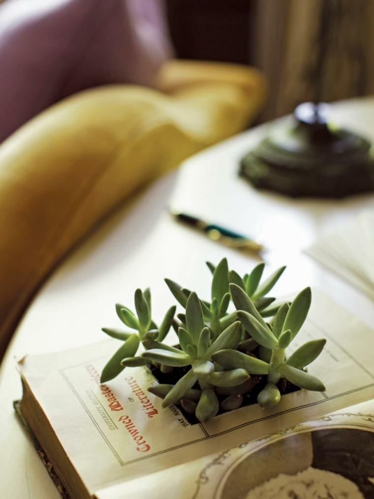 ideas diy especiales libro plantador esferas