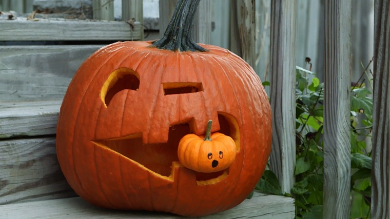 Manualidades para halloween f ciles de hacer - Como hacer calabazas de halloween ...