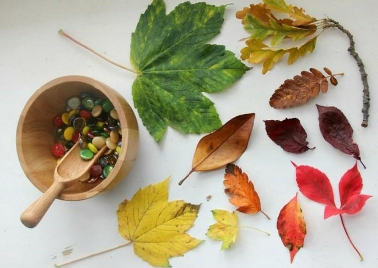 ninos recoger hojas colores manualidades