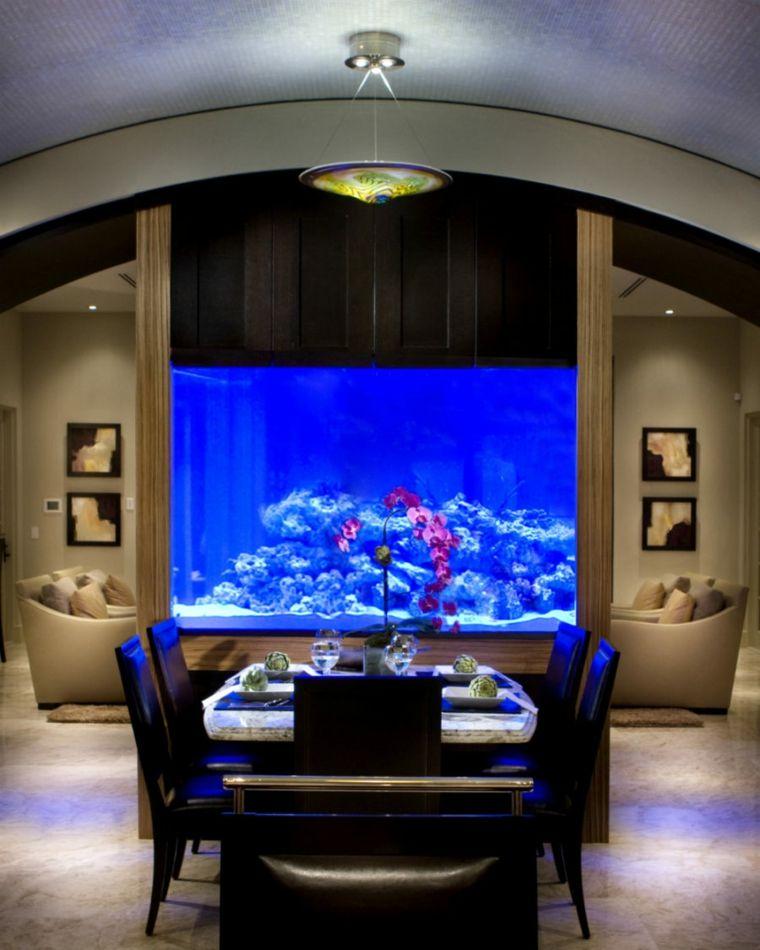 peces grandes para acuario