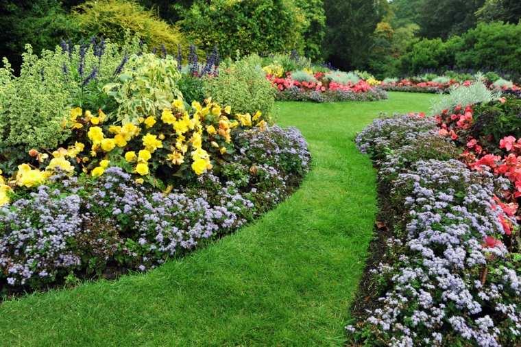 sendero cesped definiciones plantas flores