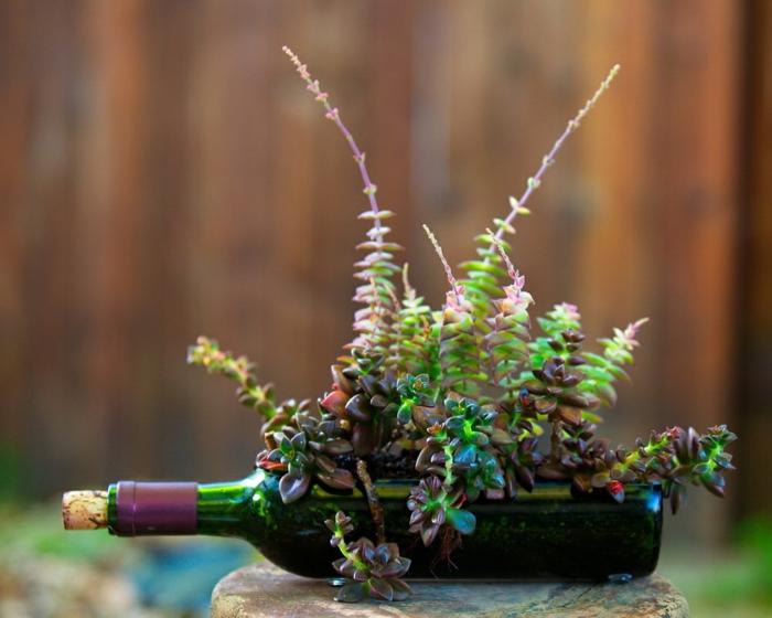 botellas de cristal patios decoraciones plantas