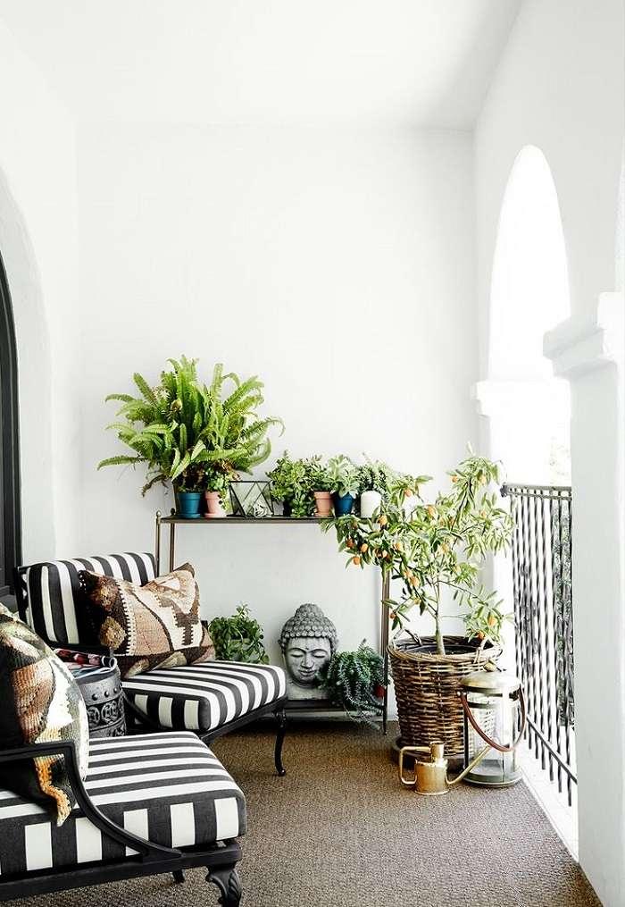 casa decorada planras interior opciones ideas