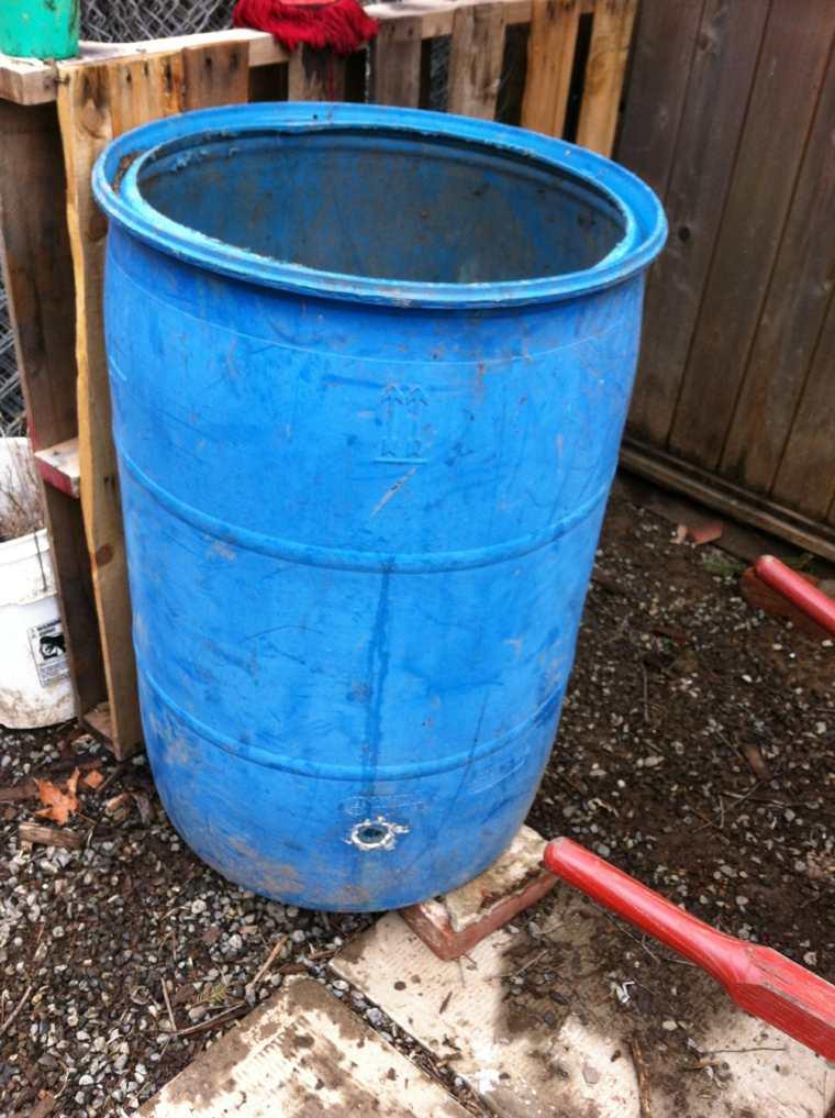 cómo cultivar patatas barril grande