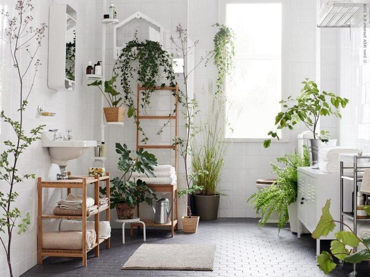 Decorar con plantas de interior la casa - Decorar con plantas el salon ...