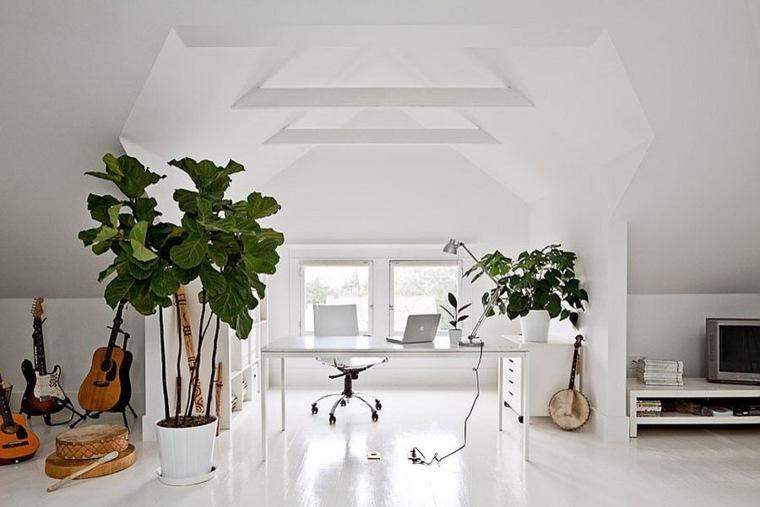 decorar con plantas de interior altas salón