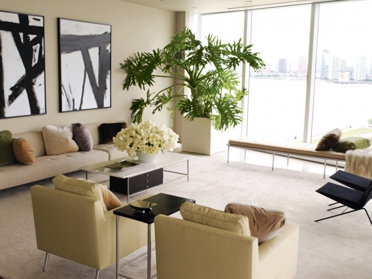 decorar con plantas de interior grandes