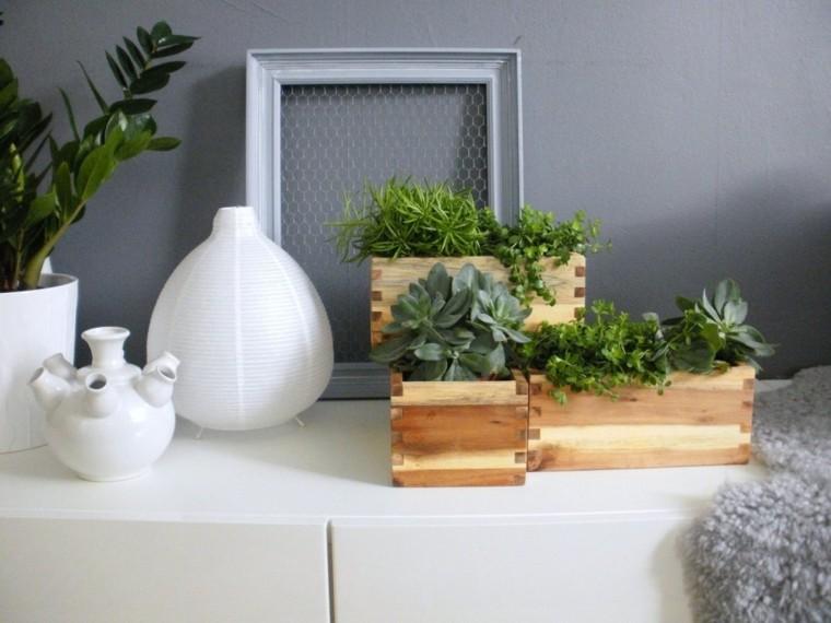 decorar con plantas de interior pequeñas