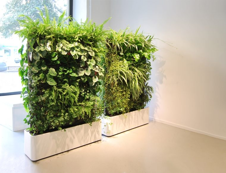 decorar con plantas de interior vertical