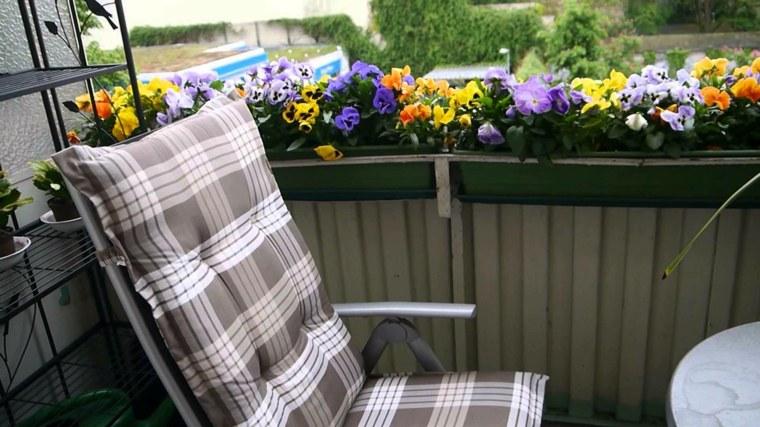 decorar terrazas con plantas flores