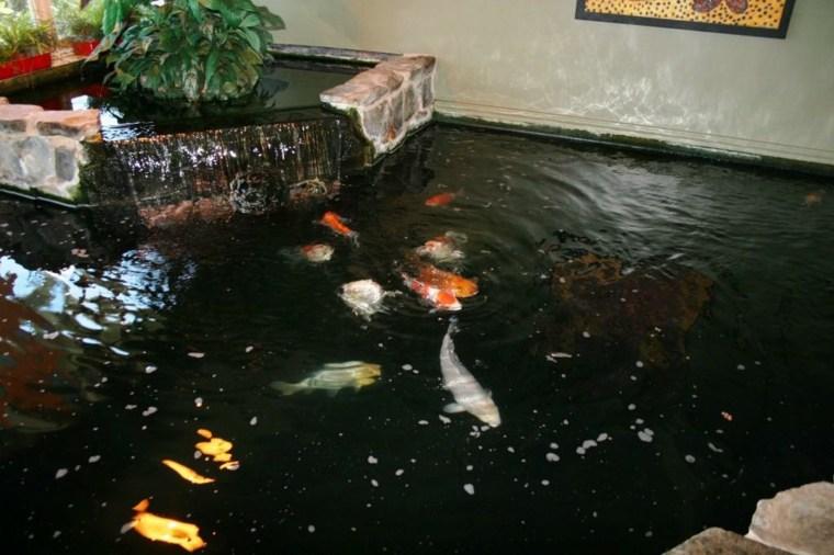 disneo fuente estanque peces koi