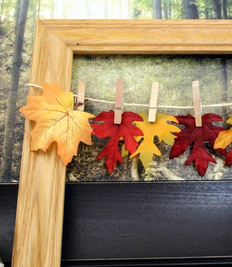 marcos de fotos hojas muestras imagenes