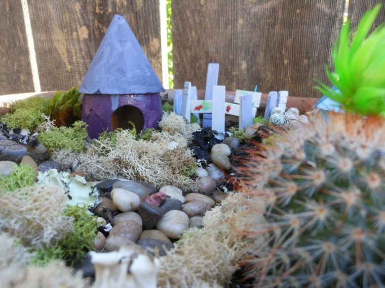 miniaturas jardin miniatura plantas maceta ideas